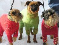 Pleteni kombinezoni za pse 1