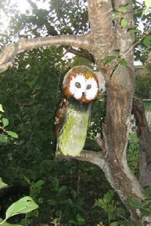 пластмасова бутилка owl14