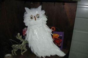 пластмасова бутилка owl30