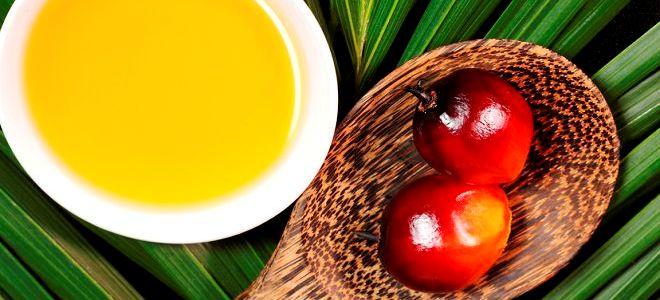 z czego robi olej palmowy