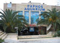 Аквариум в Пафосе