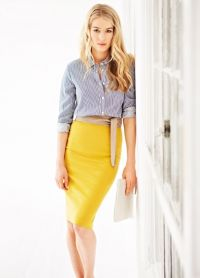 Pencil Skirt 2013 4