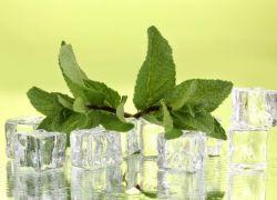 liście mięty pieprzowej aplikacji