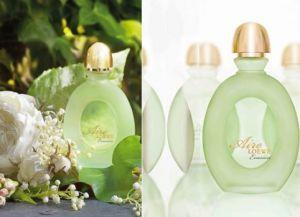 parfém pro léto5