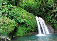 Водопад в тропическом лесу на острове Пти-Мартиника