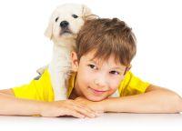 Fotosesja z psem 2