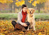 Sesja zdjęciowa z psem 6