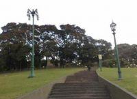Лестница в парке
