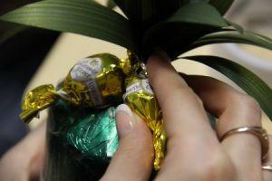 ananas od słodyczy10