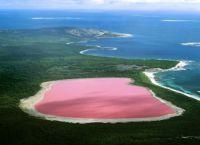 Pink Lake Hiller Australia_2