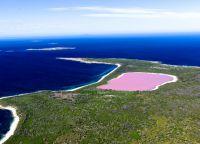 pink lake hiller australia_3