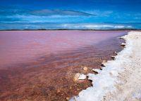 Pink Lake Hiller Australia_5