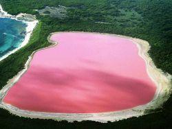 růžové jezero