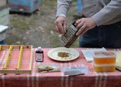 Recept za tinkturu s propolisom