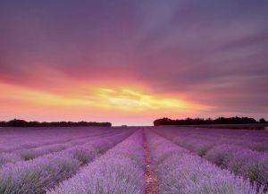 Provence Francuska 6