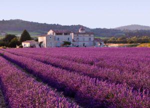 Provence Francuska 8