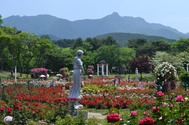 Парк Seoul Grand Park в Квачхоне