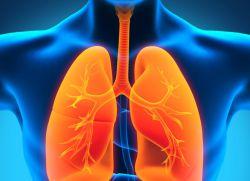 количествен тест за туберкулоза