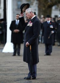 Принц Чарльз на параде