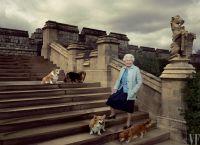 Королева Елизавета II со своими собачками