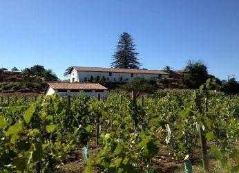 Винный завод Vina los Perales