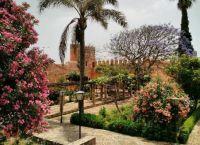 Андалузский сад