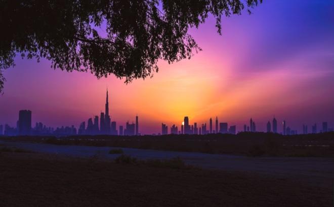 Вид на Дубай с заповедника
