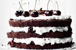 домаћи чоколадни спужвасти колач рецепт