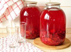 Kombinacija rdečega ribeza za zimski recept