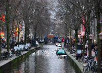 Ulica Red Light u Nizozemskoj4