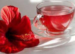 właściwości czerwonej herbaty