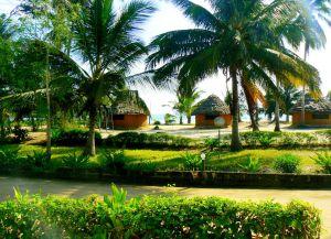 Багамойо