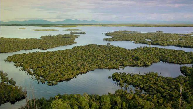 Река Капуас, Индонезия