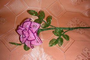 rose paciorek master class 23