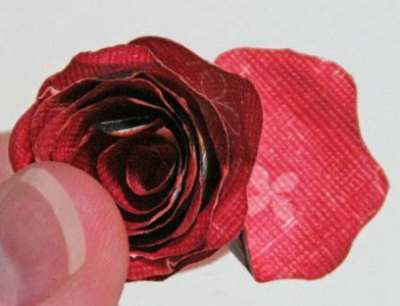 papier różany 6