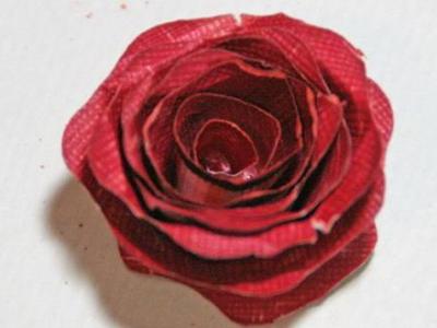 papier róża 9
