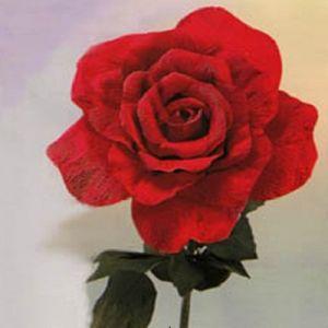 Róże z papieru falistego3