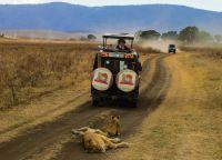 Парк Серенгети в Танзании