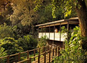 Отель The Sentosa Resort & Spa в зелени
