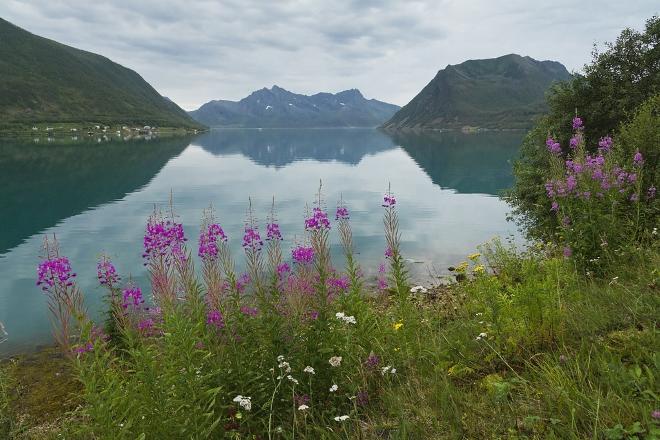 Здесь можно увидеть очень красивые пейзажи