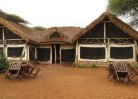 Отель Serengeti Tented Camp - Ikoma Bush Camp выглядит достаточно экзотично