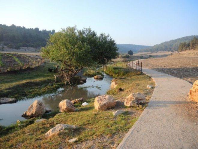 Ручей Нахаль-Ципори
