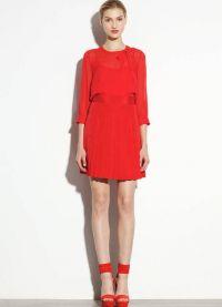 cipele za haljinu od koralja 2