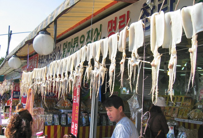 Торговля кальмарами