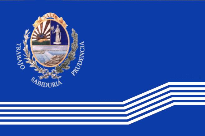 Флаг Сальто