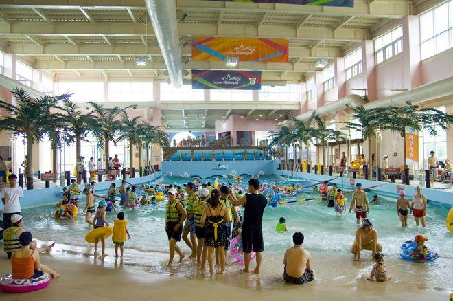 Крытый бассейн в Сорак Вотерпиа