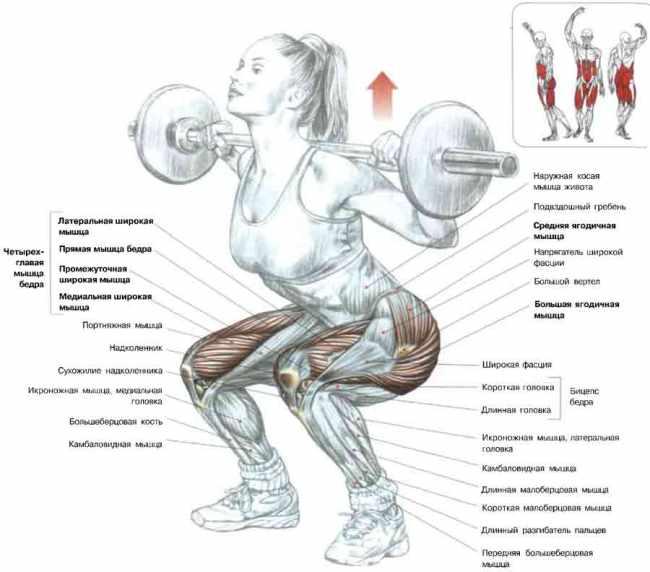 Jak dělat squat