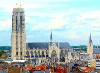 Вид на собор Святого Румольда с высоты