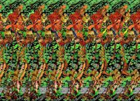 stereo slike za obuku oči 1