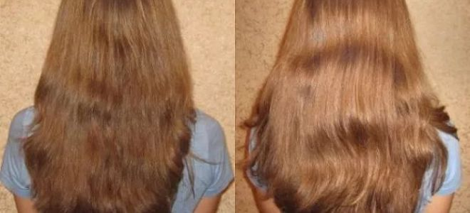 подсолнечное масло для волос рафинированное для блондинок